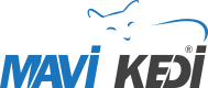 Mersin Web Tasarım | Profesyonel Web Tasarım Hizmetleri | Mavi Kedi Reklam Ajansı